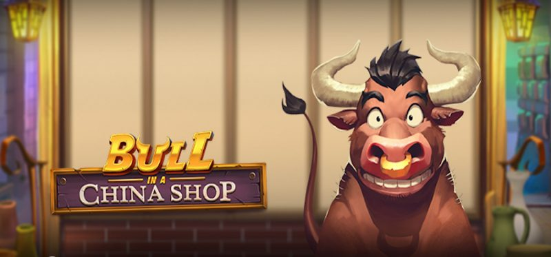 Bull in a China Shop Logo