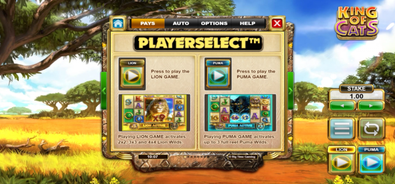 King of Cats Megaways -Playerselect