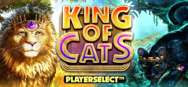 King of Cats Megaways Banner