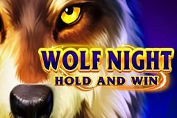 Wolf Night Hold And Win slot