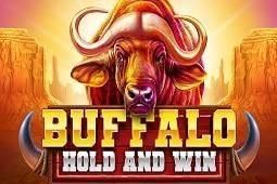 Buffalo Hold And Win slot